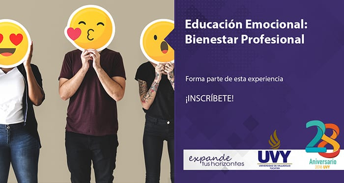 Educación Emocional Bienestar Profesional
